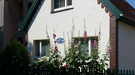 Ferienhaus-borkum mieten